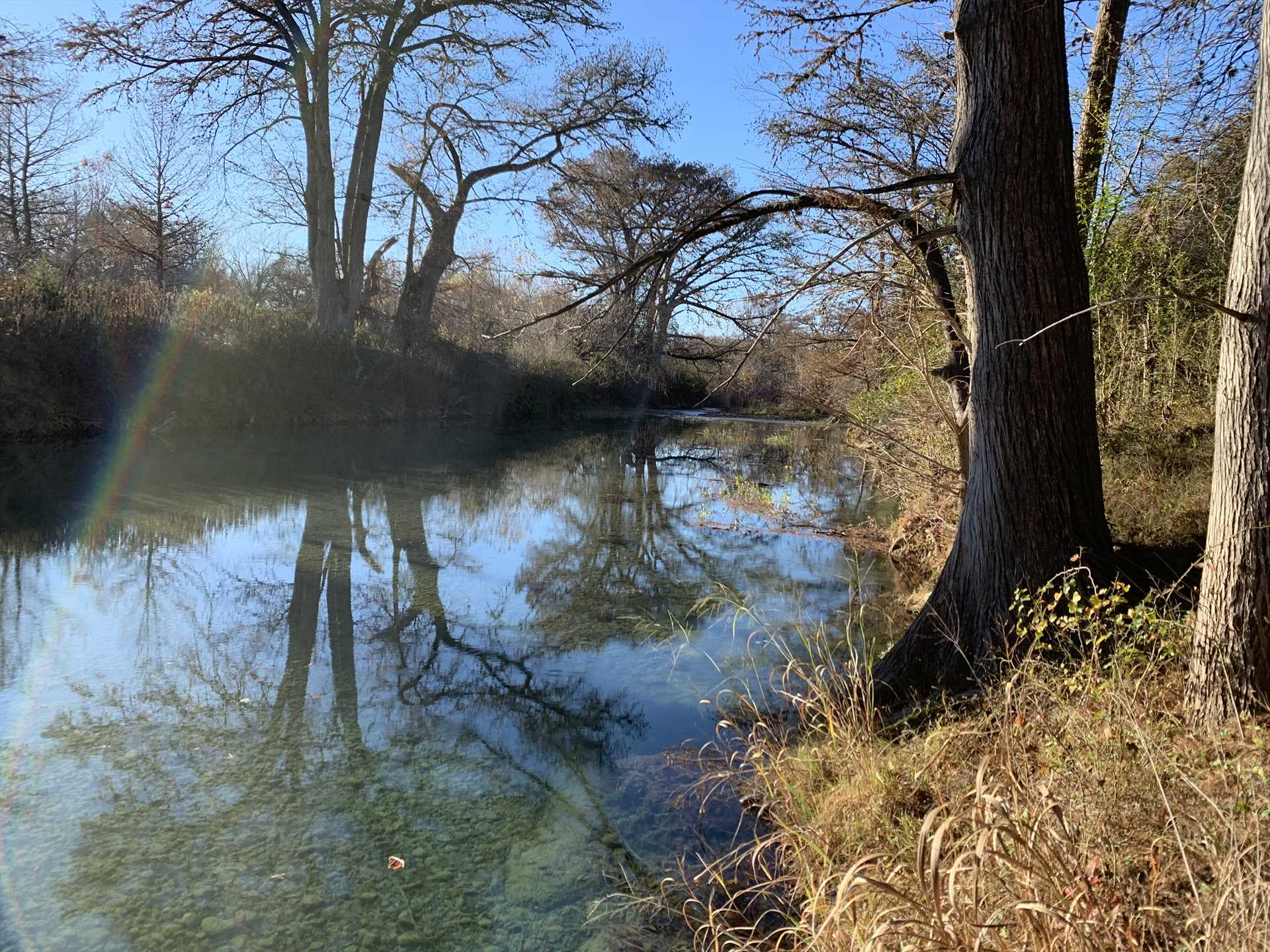 The Medina River's yours to enjoy! As our guest Jodi put it,
