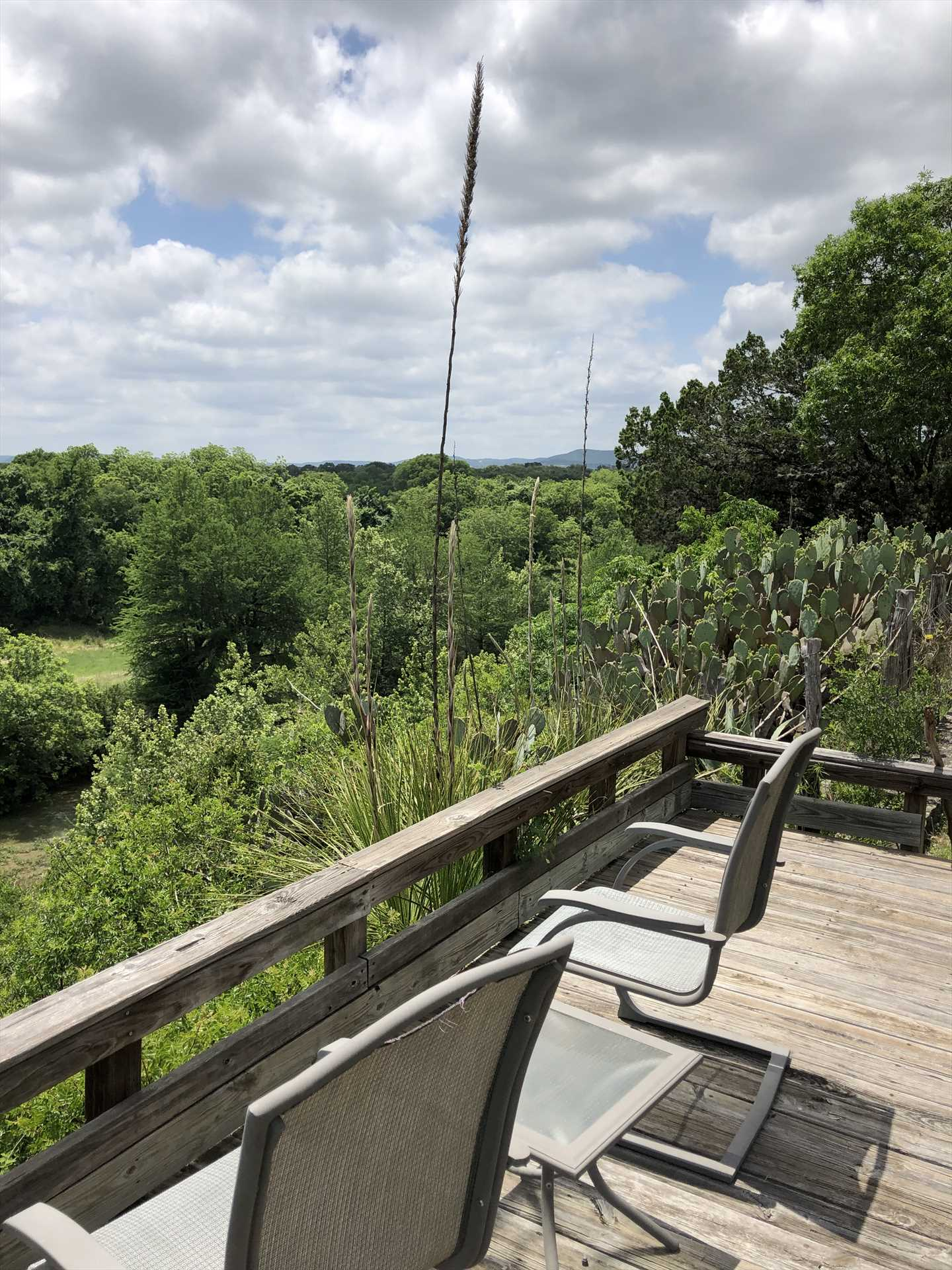 Relax on the sun deck as you take in bird's eye, treetop views of the Hill Country!