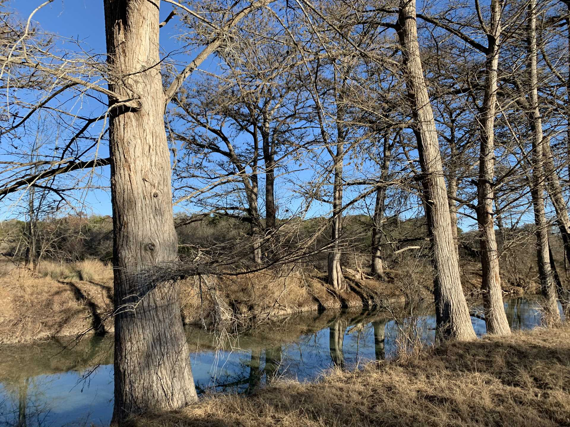 2,000 feet of Medina riverfront are yours to explore, fish, swim, and hike.