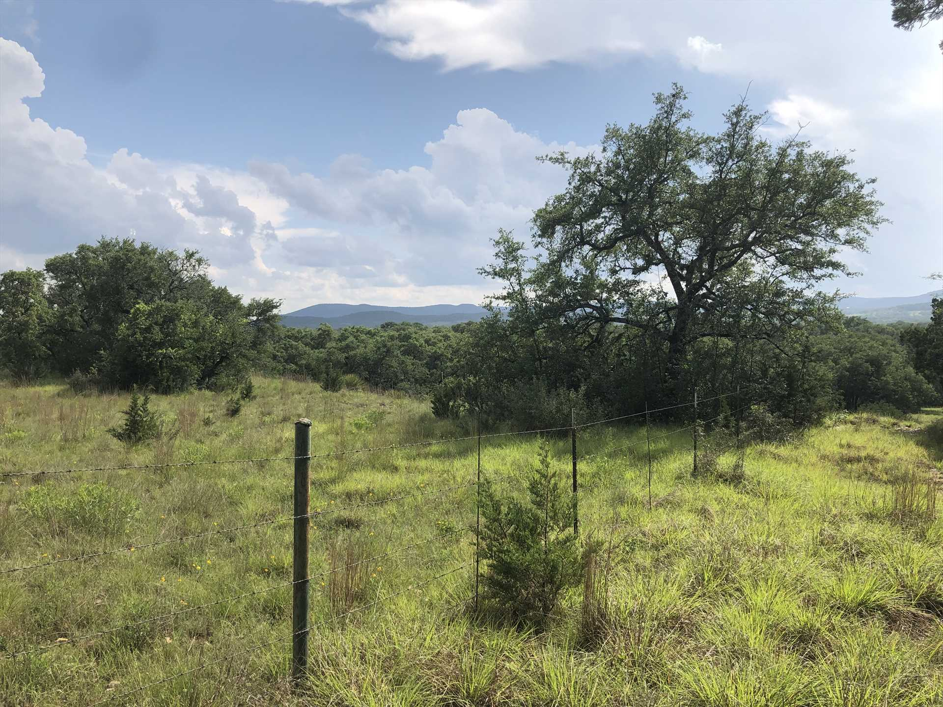 74 acres of virtually untouched Hill Country beauty are yours to explore and enjoy at Kingfisher Ranch!
