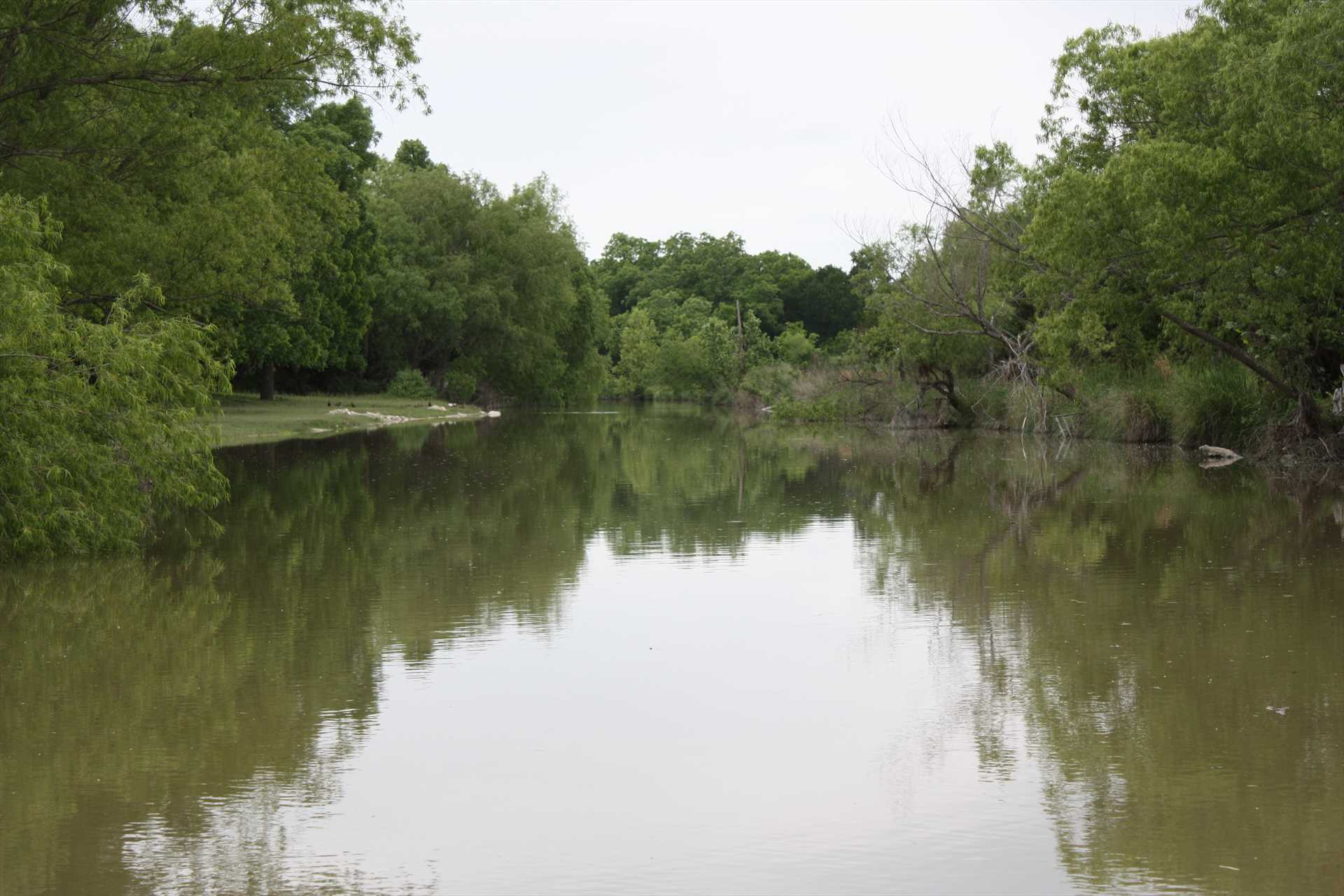 Catch-and-release fishing, tubing, and swimming without crowds or distractions await you at the creek!