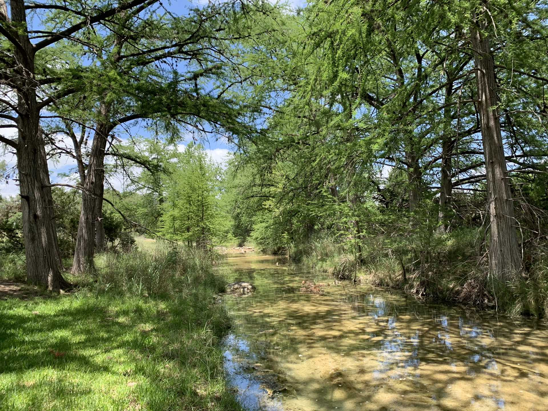 Nearby Bandera Creek's water levels vary with the seasons, but it always presents a restful and peaceful setting.