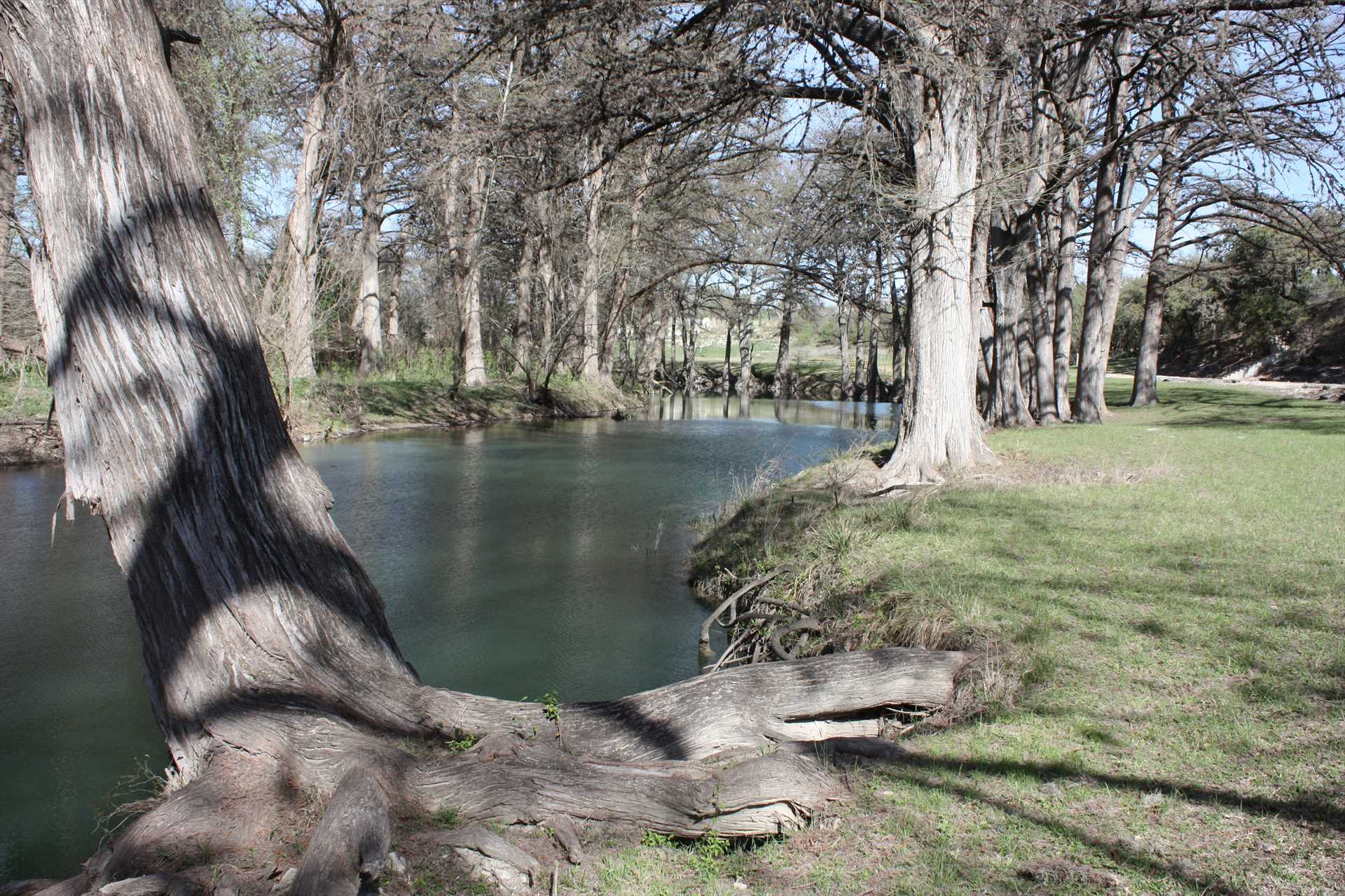 Your private access to the Medina River is a great spot to enjoy water activities, or to just find a shady spot on the bank.
