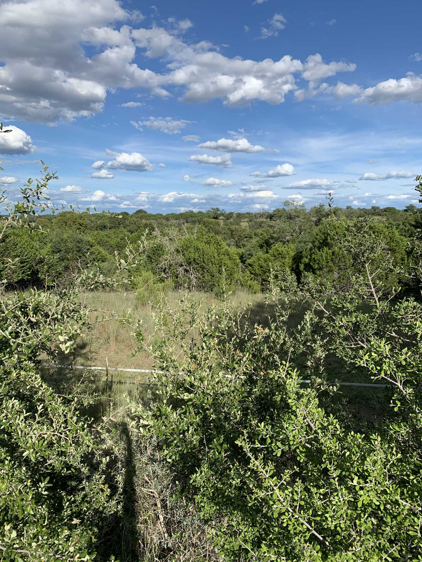 This is your view from the deck! 30 acres of ranch to explore and enjoy, as well as those inspiring Hill Country vistas.