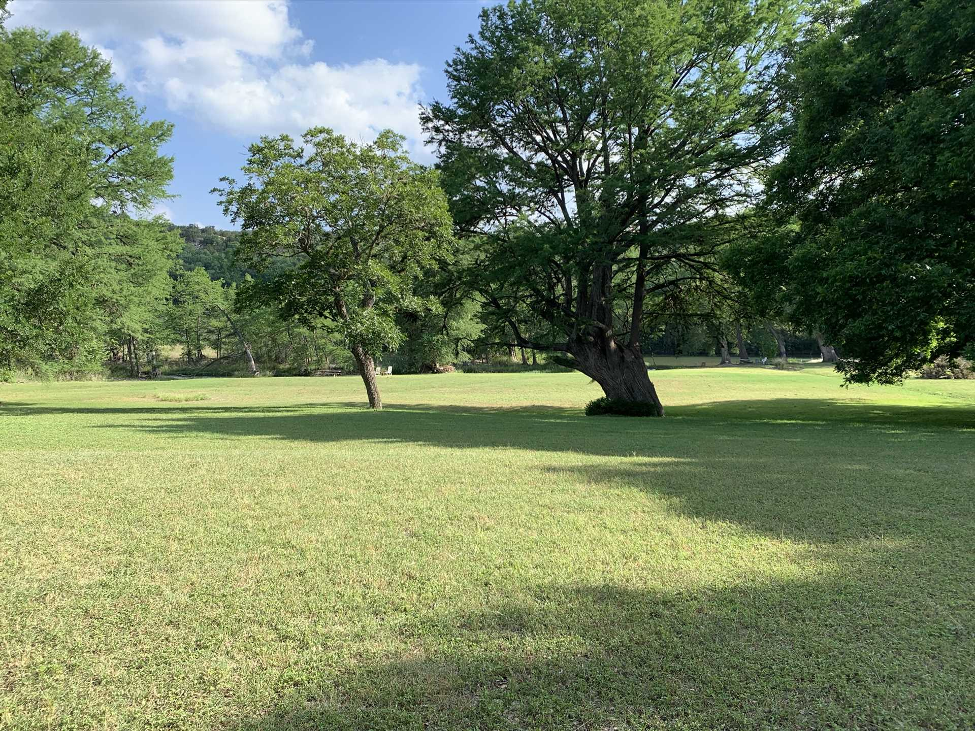 Picturesque trees under the wide-open Texas skies provide a beautiful backdrop for photos, stargazing, wildlife watching, and more!