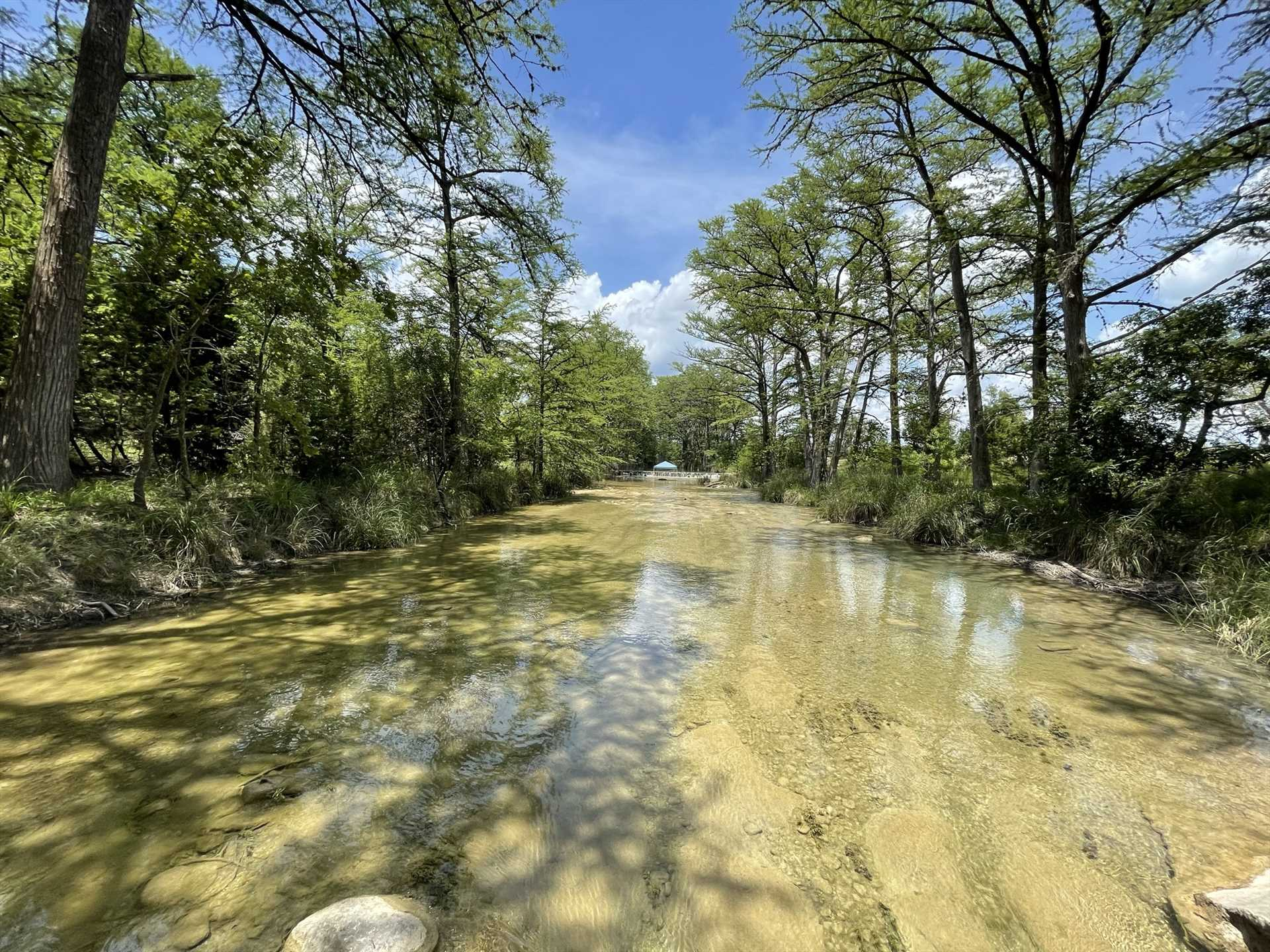 The depth of the Medina varies from one to eight feet down this stretch, perfect for fishing, tubing, and swimming.