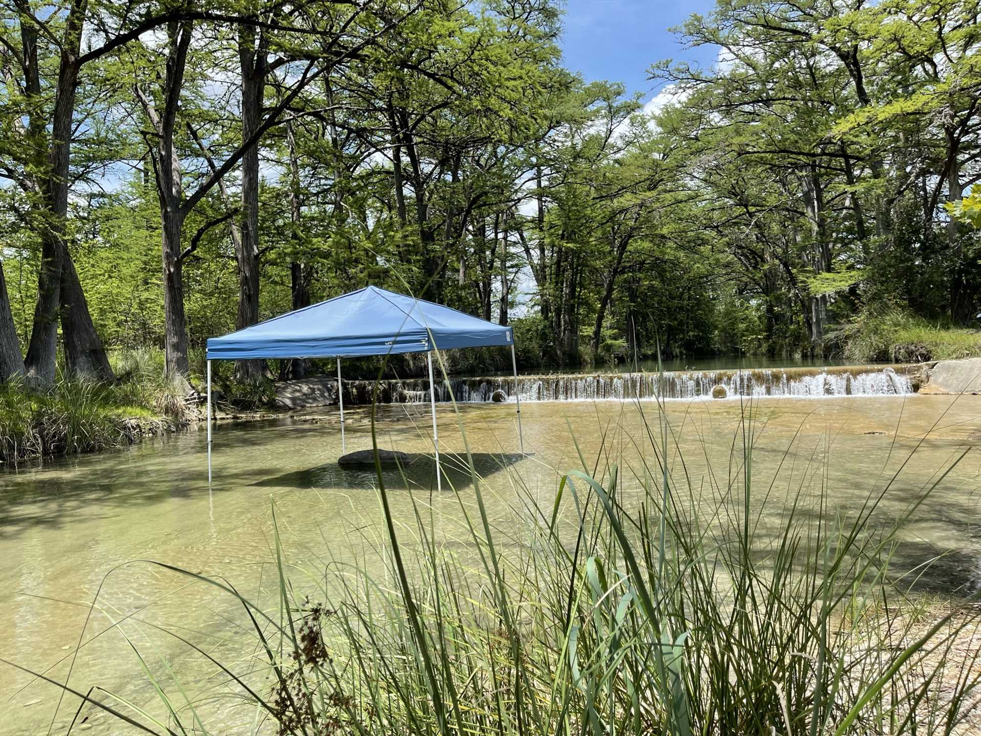 Want some shade, but don't want to get out of the water? The canopy here has you literally covered!